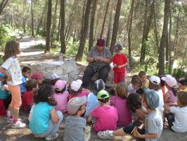 Activitats de descoberta al bosc